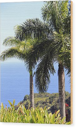 Black Sand Beach Lookout Wood Print