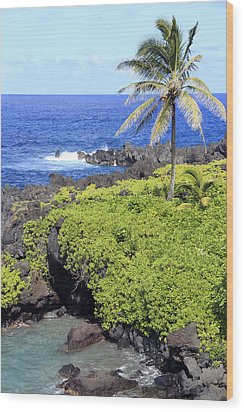 Black Sand Beach Lookout Park Wood Print