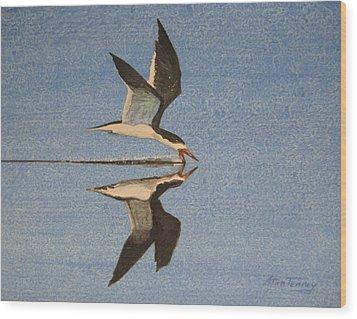 Black Skimmer Wood Print