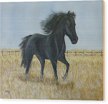 Black Stallion Trot Wood Print by Kelly Mills