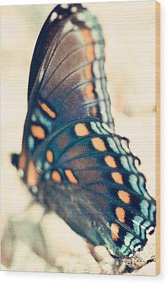Black Swallowtail Butterfly Wood Print by Kim Fearheiley