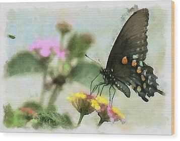 Black Swallowtail Wood Print by Lorri Crossno