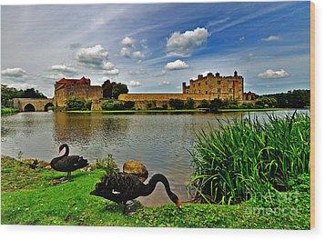 Black Swans At Leeds Castle II Wood Print