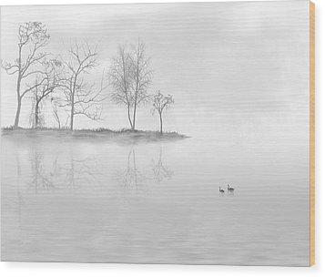 Black Swans Swimming In A Lake Wood Print by Bijan Studio