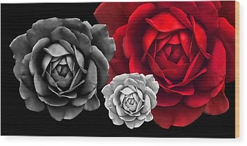 Black White Red Roses Abstract Wood Print by Jennie Marie Schell