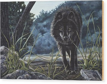 Black Wolf Hunting Wood Print by Lucie Bilodeau