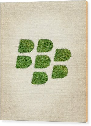 Blackberry Grass Logo Wood Print by Aged Pixel