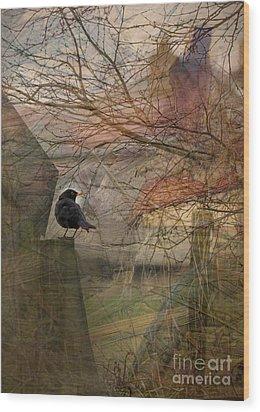 Wood Print featuring the photograph Blackbird by Liz  Alderdice
