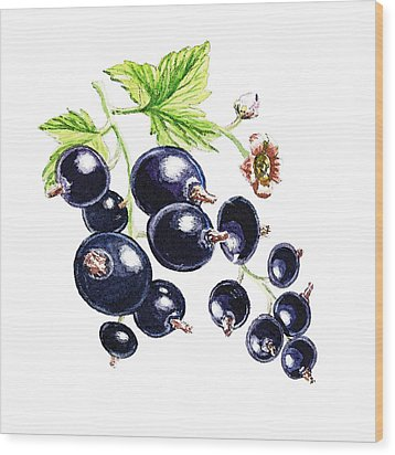Wood Print featuring the painting Blackcurrant Berries  by Irina Sztukowski