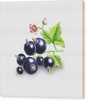 Wood Print featuring the painting Blackcurrant Still Life by Irina Sztukowski