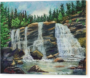 Blackwater Falls Wood Print by Bruce Schrader