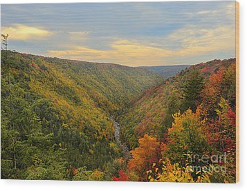 Blackwater Gorge With Fall Leaves Wood Print by Dan Friend