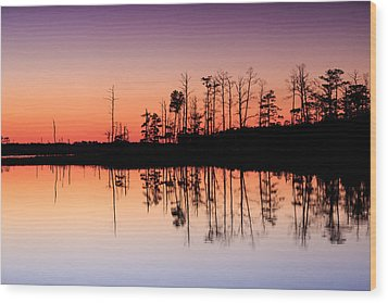Blackwater Reflections Wood Print by Jennifer Casey