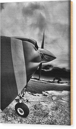 Blade Flyer Wood Print