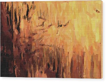 Blanchard Springs Caverns-arkansas Series 01 Wood Print by David Allen Pierson