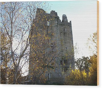Wood Print featuring the photograph Blarney Castle by Alan Lakin