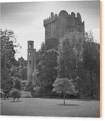 Blarney Castle Wood Print by Mike McGlothlen
