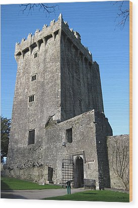 Blarney Castle Wood Print