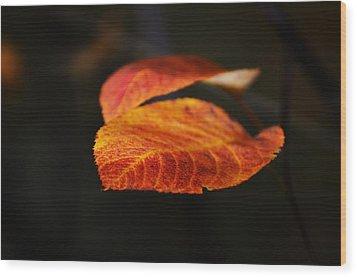 Blatt Wood Print