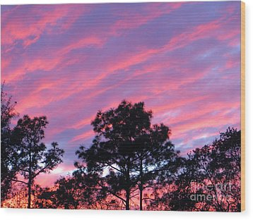 Wood Print featuring the photograph Blazing Pines by Joy Hardee