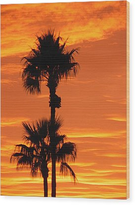 Wood Print featuring the photograph Blazing Sunset by Deb Halloran