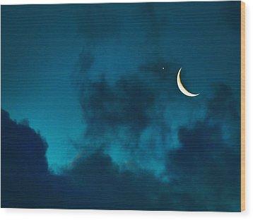 Blind Date With Venus Wood Print by Meir Ezrachi