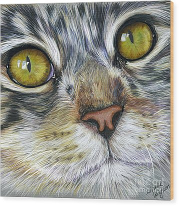 Stunning Cat Painting Wood Print by Michelle Wrighton
