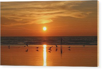 Bliss At Sunset   Wood Print by Christy Pooschke