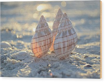 Wood Print featuring the photograph Blissful by Melanie Moraga