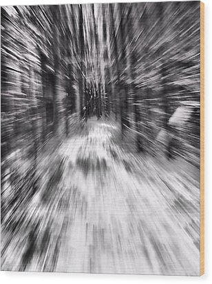 Blizzard In The Forest Wood Print by Dan Sproul