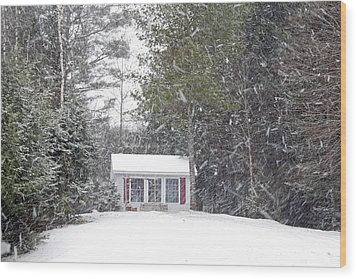 Wood Print featuring the photograph Blizzard Of 2013 Begins by Barbara West