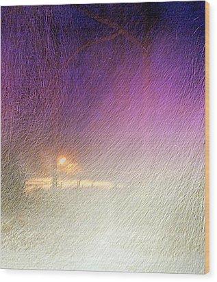 Blizzard Wood Print by Pamela Hyde Wilson