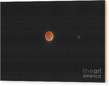 Wood Print featuring the photograph Blood Moon And Stars by Martin Konopacki