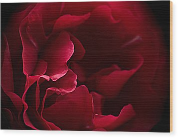 Blood Red Wood Print by Jacqi Elmslie