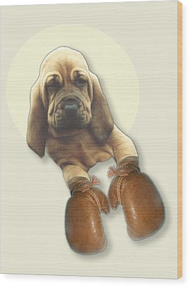 Bloodhound Boxer Wood Print by Jimmy Collins