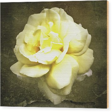 Bloom In Full Wood Print by Cathie Tyler