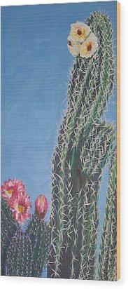 Bloomin Cactus Wood Print by Marcia Weller-Wenbert
