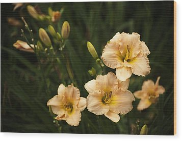 Wood Print featuring the photograph Blooming Garden by Phyllis Peterson