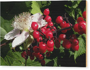 Blossom And Berries Wood Print