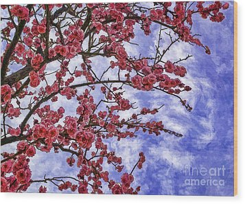 Blossoming Wood Print by Nancy Marie Ricketts