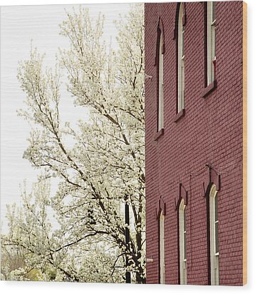 Wood Print featuring the photograph Blossoms And Brick by Courtney Webster