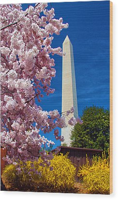 Blossoms Wood Print by Mitch Cat