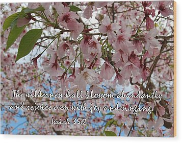 Wood Print featuring the photograph Blossoms Rejoice by Jocelyn Friis
