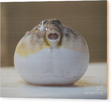 Blowfish Wood Print by Cynthia Snyder