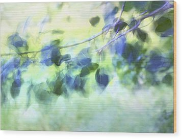Blowin' In The Wind Wood Print by Theresa Tahara