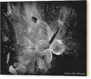 Wood Print featuring the photograph Blowing In The Wind by Lucinda Walter