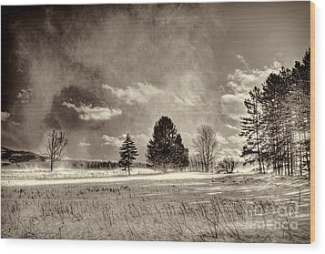Blowing Snow Canaan Valley Wood Print by Dan Friend