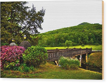 Blowing Spring Park Wood Print by David Patterson