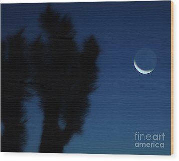 Wood Print featuring the photograph Blue by Angela J Wright