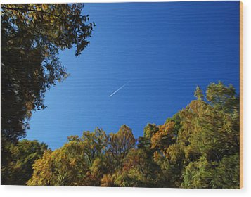 Wood Print featuring the photograph Blue Autumn Skies by Kelvin Booker